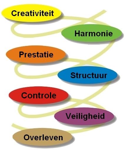 spiraldynamics16-02
